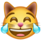 emoji 😹 | cat with tears of joy | whatsapp | 60 x 60