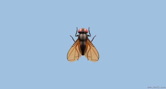  значение муха emoji Эмодзи копия  emoji Словарь Эмодзи